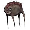 Rakuzanka's avatar