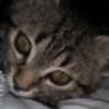 Ralouise's avatar