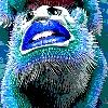 RamTheWIFI's avatar