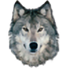 RAMWolff's avatar