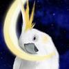 Ran427's avatar