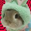 randombun's avatar