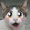 Raneko's avatar