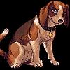 Rappadapa's avatar