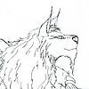 Raschaak's avatar
