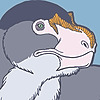 raven-amos's avatar