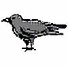 RaveneyedSkies's avatar