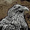 ravensitsilent's avatar