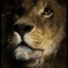 Raykkonen's avatar