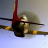 Rayonant's avatar