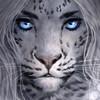 RayunaArt's avatar