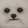 RazorSharpFangz's avatar