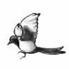 RBBanana's avatar