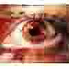 rds3d's avatar