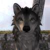 rdsmith1's avatar