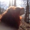 RealPlush's avatar