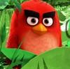 RedBird231's avatar