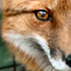 Redd-Fox's avatar