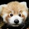 RedEnfilade's avatar