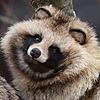 Redgum901's avatar