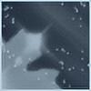 redkali's avatar
