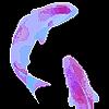 reesepup0220's avatar