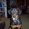 regilio11's avatar