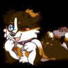 reimeiyuzu's avatar