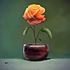 RelayDisplay's avatar