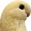 Remink's avatar