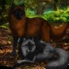 Renallia's avatar
