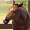 rentistic's avatar