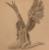 republicmemez's avatar