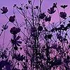 Retishia05's avatar