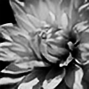 revelin1661's avatar