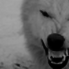 Revjnt's avatar