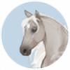 Rhaine-Horses's avatar