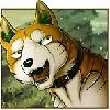 RiKyy's avatar