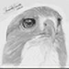 rmc-explus's avatar
