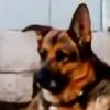 RoadTripDog's avatar
