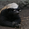 RobotMafiaStripClub's avatar