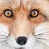 rocketmonster20's avatar