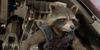 RocketRaccoonFanclub's avatar