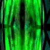 Roh-Klar's avatar