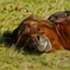 roisabborrar's avatar
