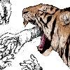 RomTom410's avatar