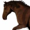 Romydb's avatar