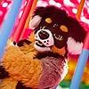 RonjaWolf's avatar