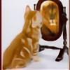 RooCat's avatar