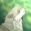 RorokyKyroi's avatar